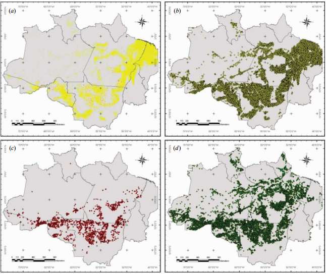 Maps of the Brazilian Amazonia showing (a) the total cumulative deforested area based on the INPE-DETER dataset until 2004 (yellow) and in 2005 (red), and the annual cumulative number of hot pixel detections in 2005 from NOAA-12 dataset over (b) areas deforested until 2004, (c) areas deforested in 2005 and (d ) forested areas in 2005.