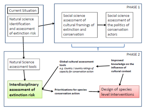 Schematic of proposed protocol for a phased implementation of an applied biocultural theory of avoided extinction to improve prioritization procedures (redrawn from [4]).