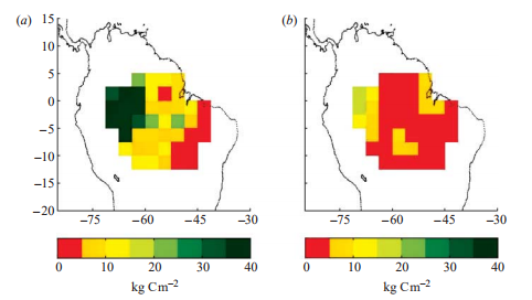 Spatial representation of vegetation carbon for the identical simulation with the ED model as given in figure